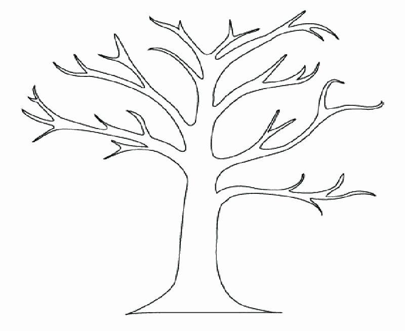 Tree Trunk Coloring Page Unique Tree Trunk Coloring Page At Getcolorings Tree Coloring Page Fall Leaves Coloring Pages Christmas Tree Coloring Page
