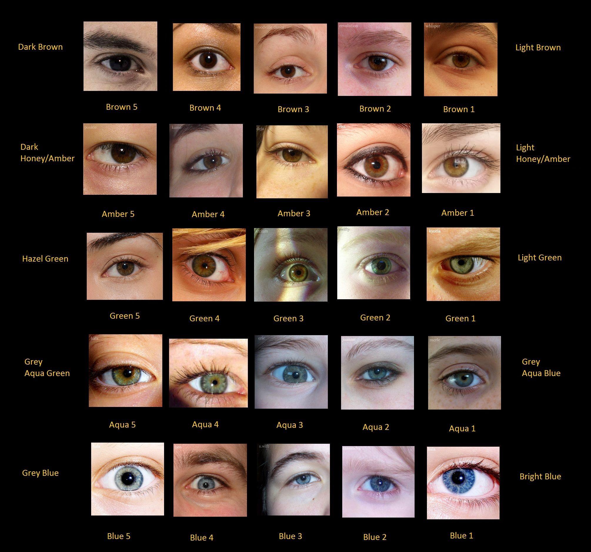 порошина поделилась название цветов глаз с фото половины нижегородцев