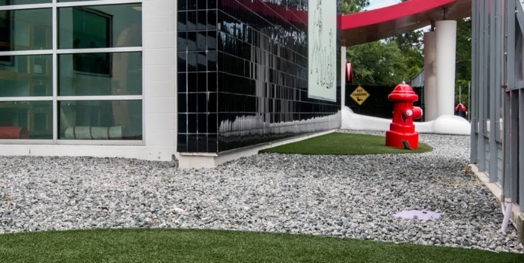 The Best Friends Pet Care Facility Outfitted Their Outdoor Relief