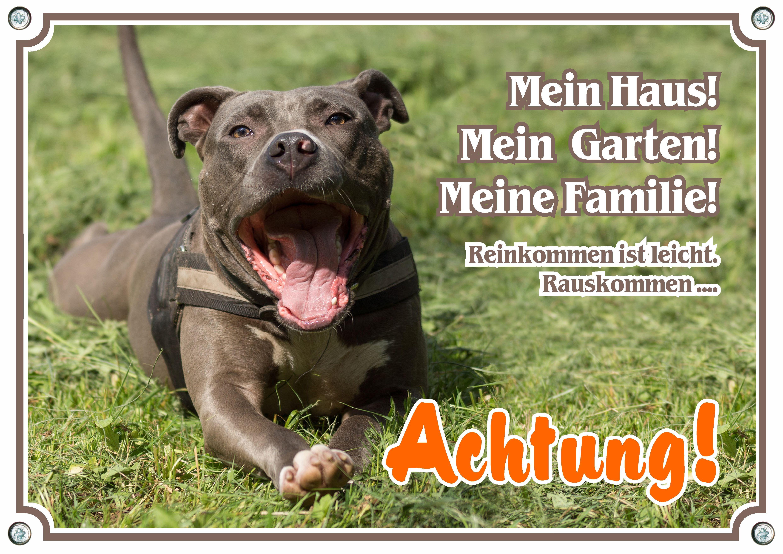 Hundeschild American Staffordshire Terrier Top Metallschild Staffordshire Terrier American Staffordshire Terrier