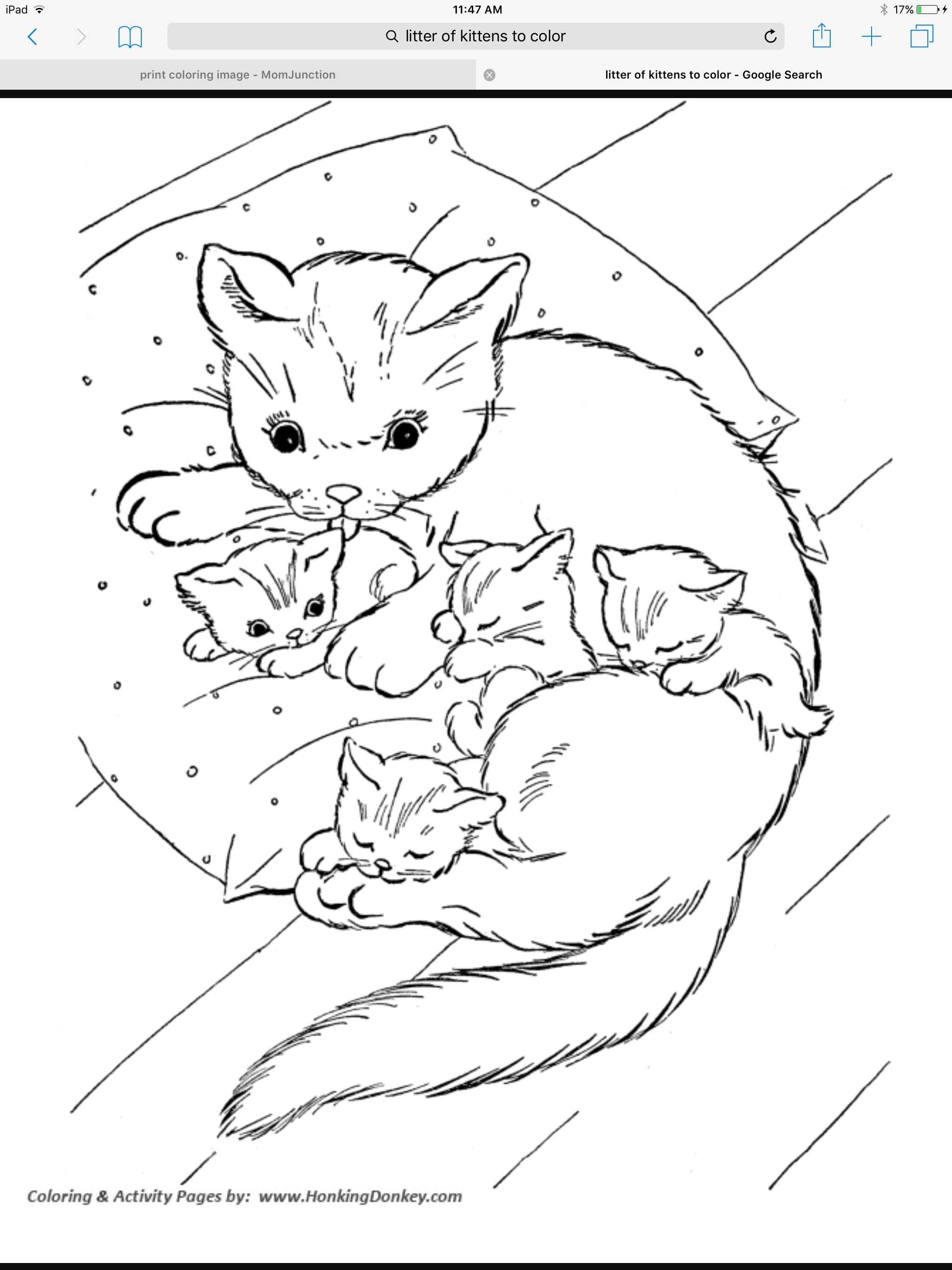 Pin By Ilca Kup On Befor And After Coloring Pages Kittens Coloring Animal Coloring Pages Cat Coloring Page