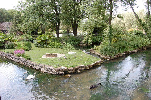 Trout Farming Paradise? | Ponds backyard, Trout, Backyard