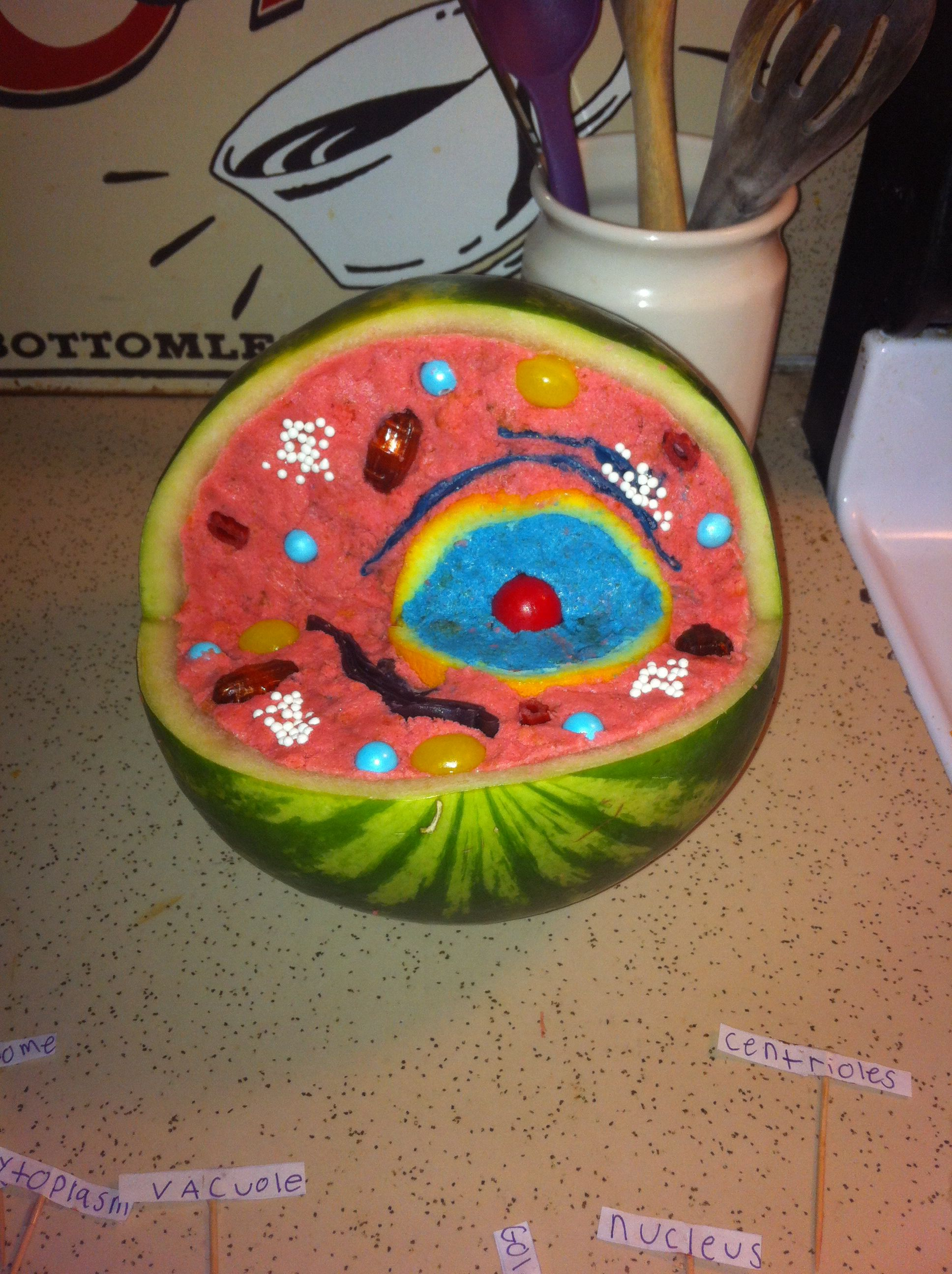 incredible edible cell project yummy for the