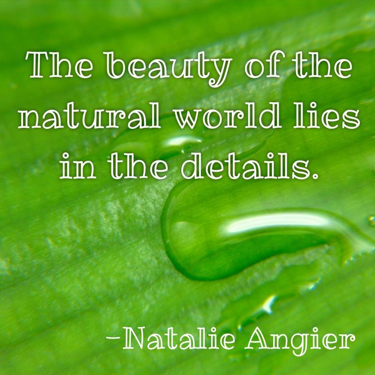 Nature Garden Outdoors Beauty Quotes Inspirational Nature Quotes Nature Quotes Beautiful Inspirational Quotes