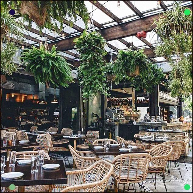 Beautiful Botanical Plant And Rattan Furniture Setting In This Restaurant #Botanical #Restaurant #Restaurantinteriors #Inspiringinteriors #Plant #Plants #Jungalow #Jungalowstyle