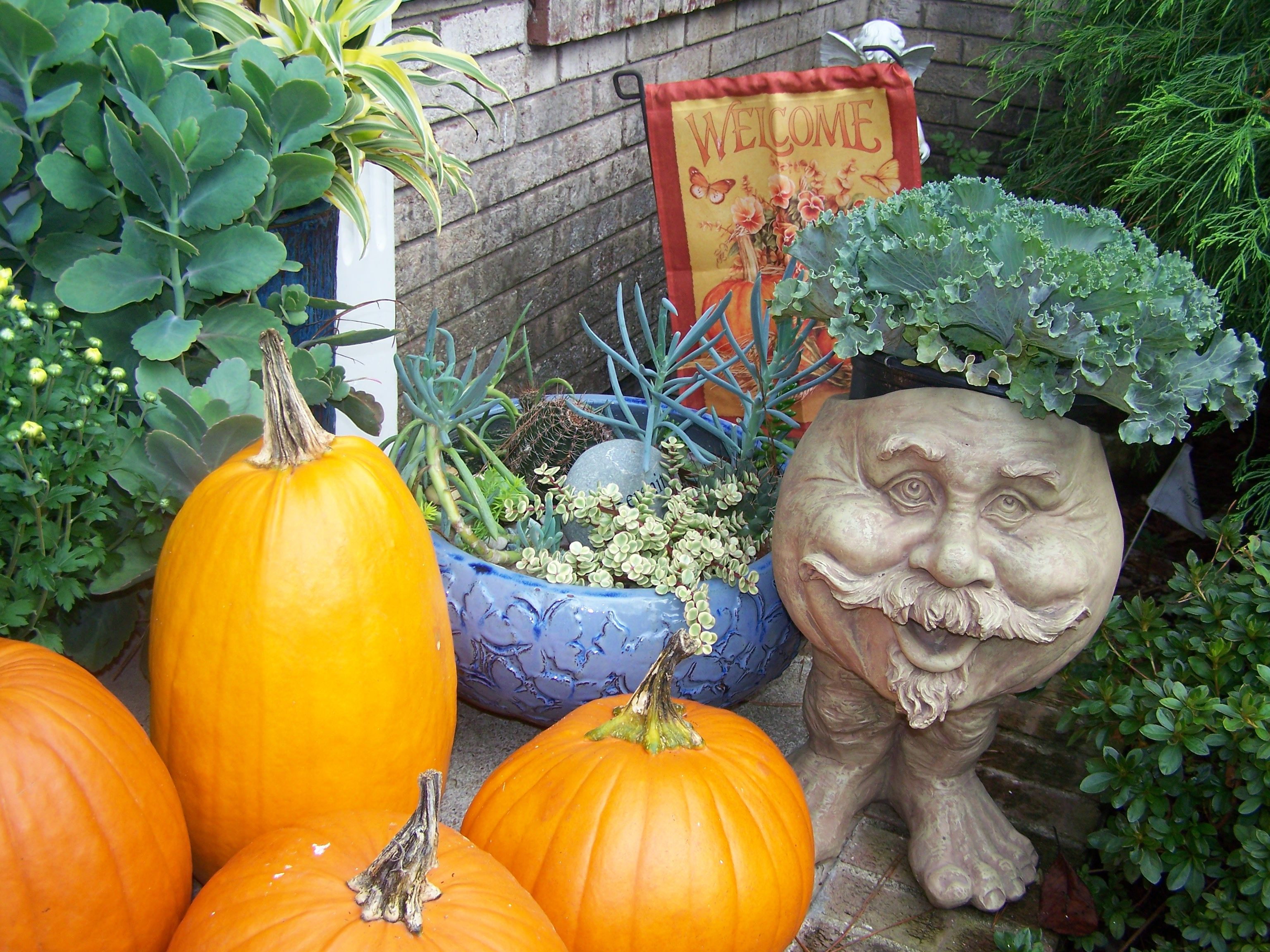 Mr. Cabbage Head tends the pumpkin patch.
