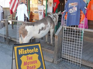 A Treasure of Free Homemade Gold Prospecting Equipment Plans and Commentary: Oatman, Arizona Burros