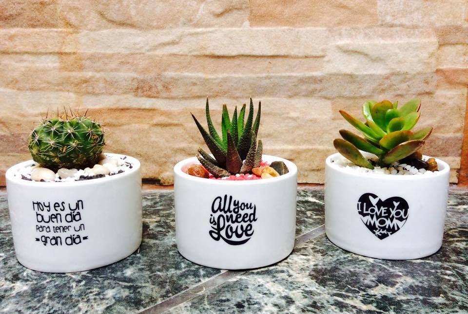 Macetas con frases buscar con google macetas for Oficinas decoradas con plantas