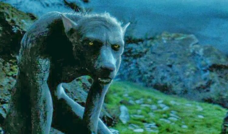 This Is Remus Lupin In His Werewolf Form At The Sight Of A Full Moon Harry Potter Creatures Magical Creatures Harry Potter Wiki