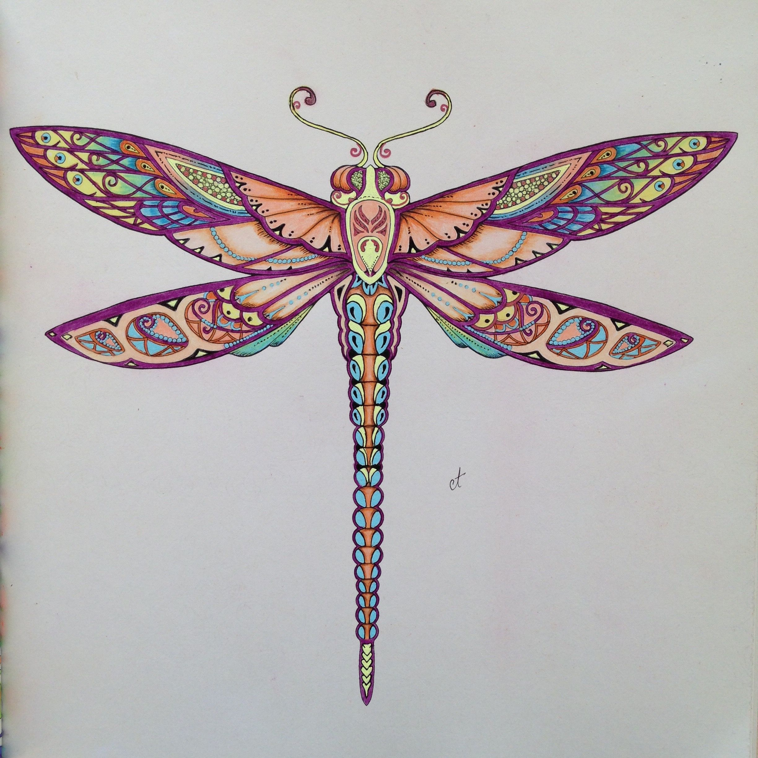 Johanna Basford Coloring Books Colouring Secret Gardens Dragonflies Color Combinations Colored Pencils Diy Art Journaling