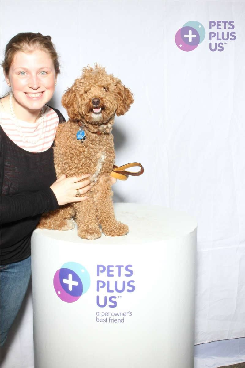 On Saturday June 8th and Sunday June 9th the Pets Plus Us Pack was at Woofstock, North America's Largest Festival for Dogs. Here are the photos that were taken at our Photobooth