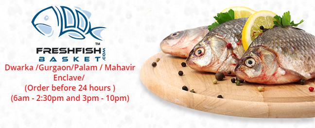 Online Fresh Fish Store In Delhi Fresh Fish Fish Fresh
