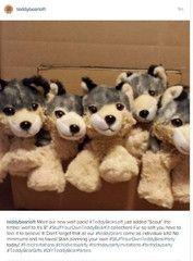 7b73c16b9ff Teddy Bear Loft - The stuff your Own Teddy Bear Experience at Home