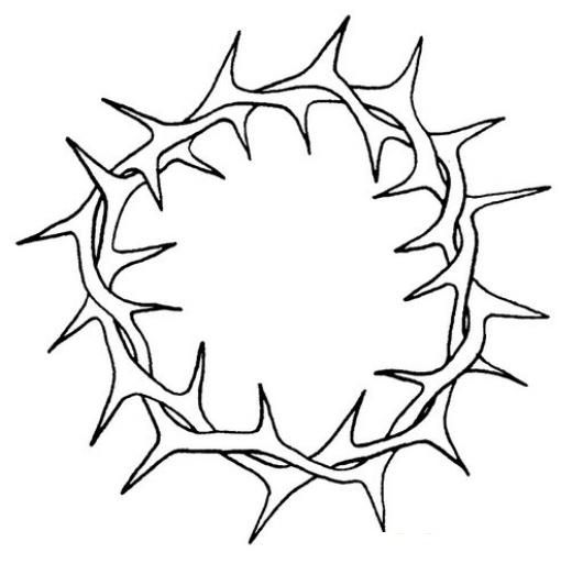 Coloring Easter Week Crown Of Thorns ColoringChild