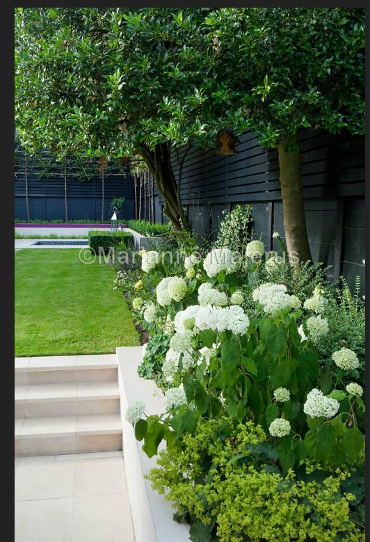 black fencing, green and white garden design. charlotte rowe, Garten und erstellen