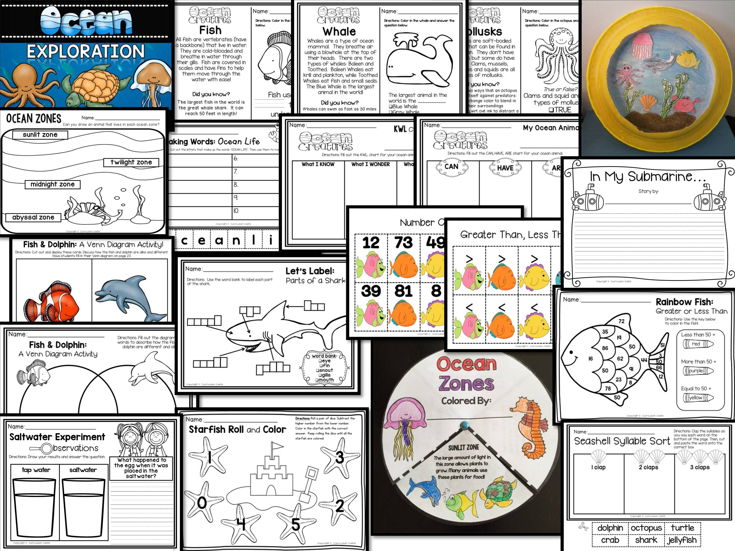 Ocean Exploration Unit All About Ocean Life Animals And