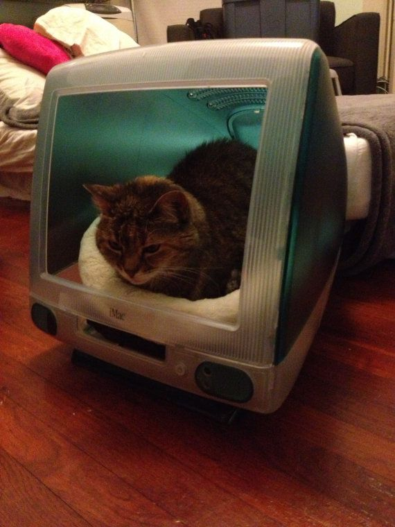 Recycled Imac Cat Kitty Condo Bed By Hoopurb On Etsy 95 00 Etsy Cats Cat Condo Cats