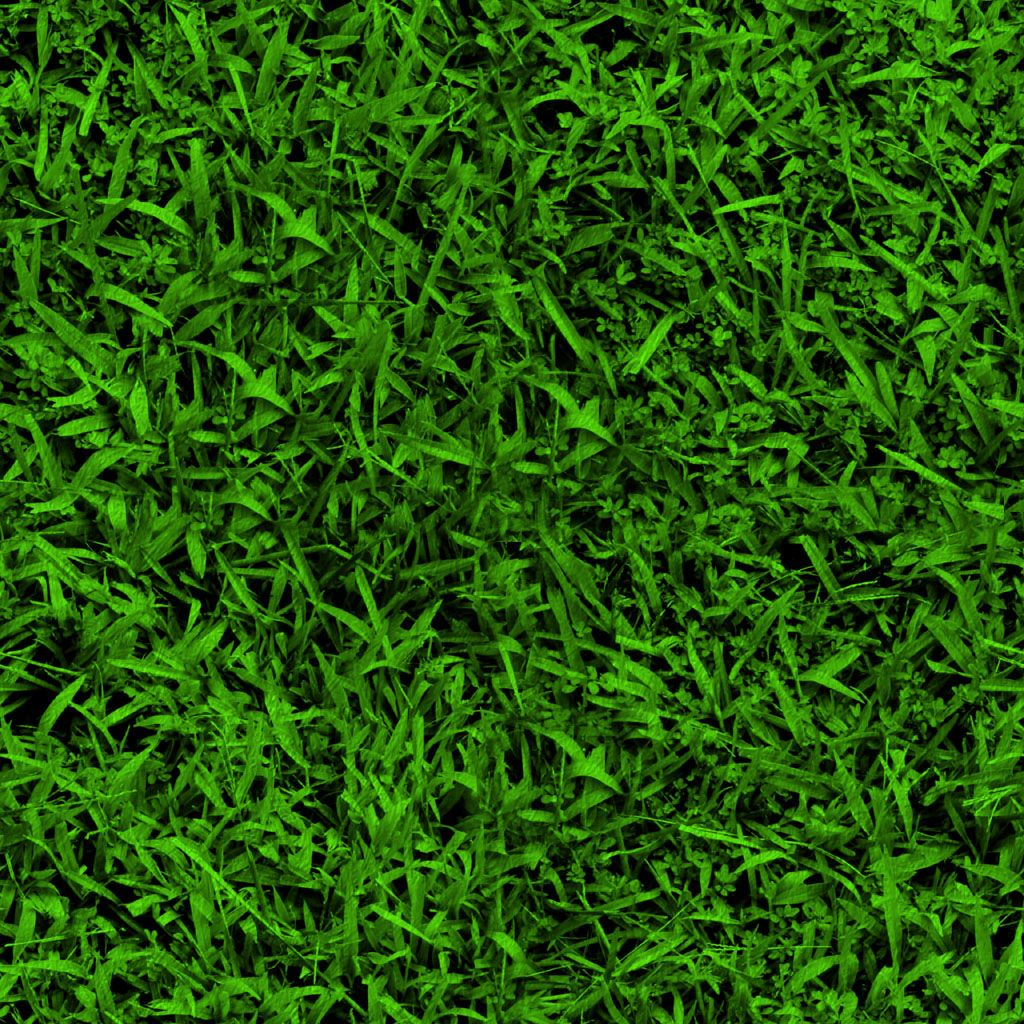 grass background texture - photo #37