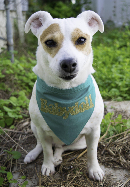 Retro 90/'s baby dog bandana