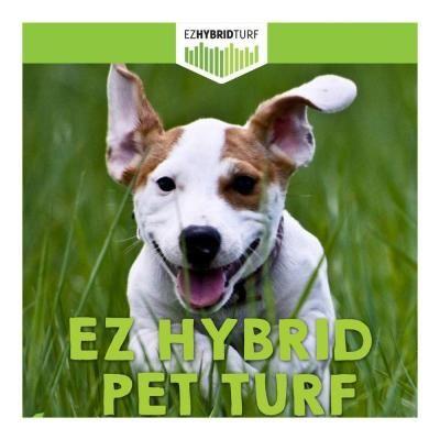 Ez Hybrid Turf Pet Turf 4 Ft X 5 Ft Artificial Grass Synthetic Lawn Turf Hybrid Pet Turf 4x6 The Home Depot Pet Turf Lawn Turf Synthetic Lawn