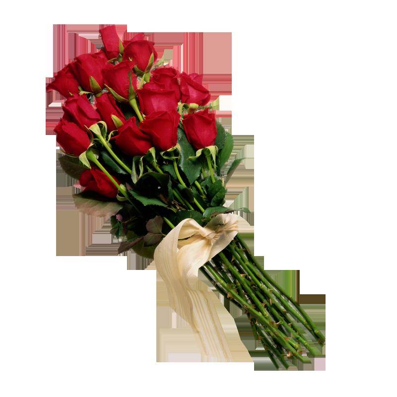 Flores Naturales Natural Flowers Fresh Flowers Online Best Online Flowers Flowers