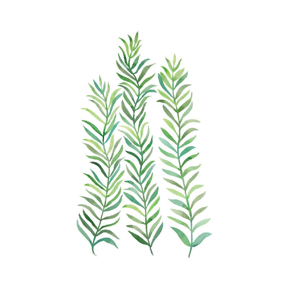 Green Vines Art Print 32x32 Botanical Watercolor Leaf Print   Etsy ...