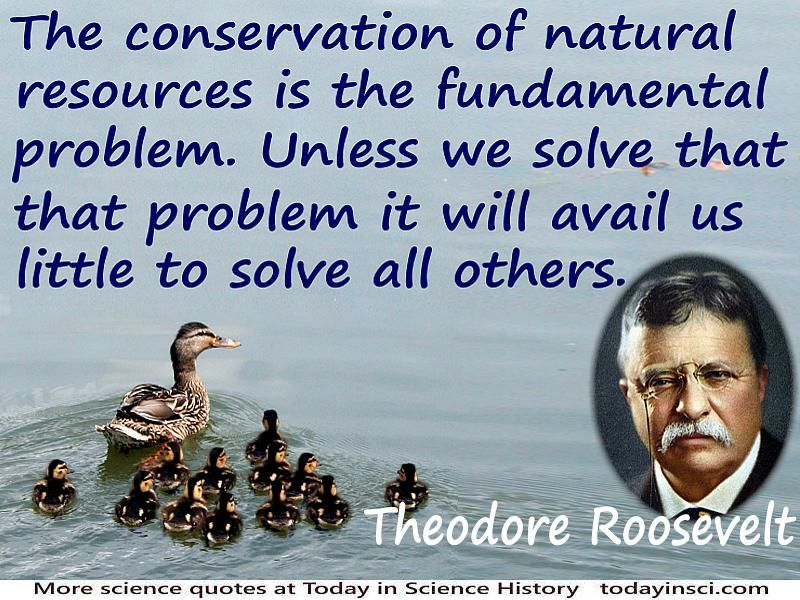 Teddy Roosevelt Quote Endearing Theodore Roosevelt Quotes  34 Science Quotes  Dictionary Of