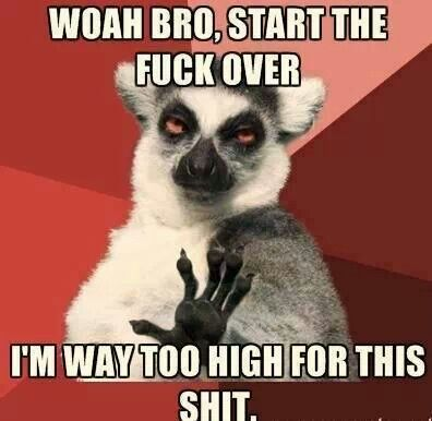 From The Infamous Cheech Chong Funny Pictures Crazy People Teacher Humor
