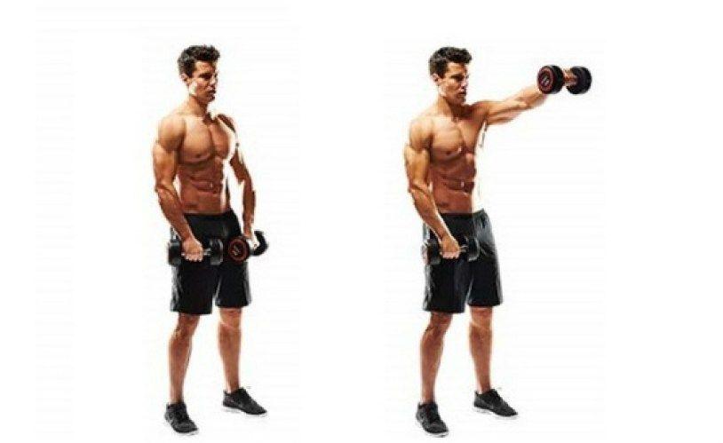 shoulder exercises with dumbbells pdf