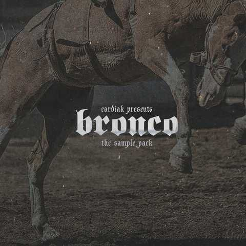 Bronco The Samples WAV FANTASTiC | 20 October 2016 | 673 MB New pack Bronco. These 15 loop compositions touch on a more fierce sound with dark pads, pluck