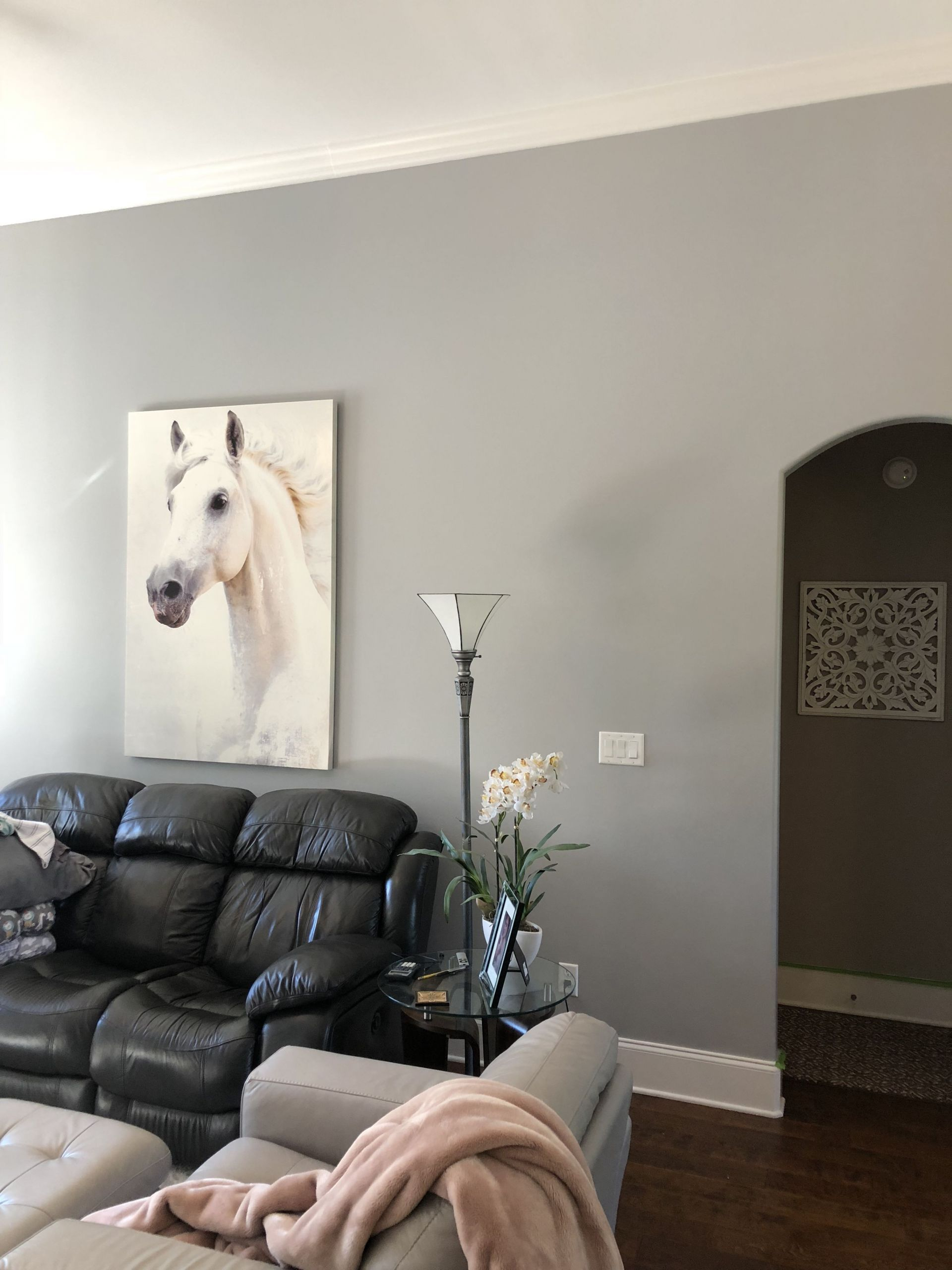 Best Of Sherwin Williams Peel and Stick Wallpaper