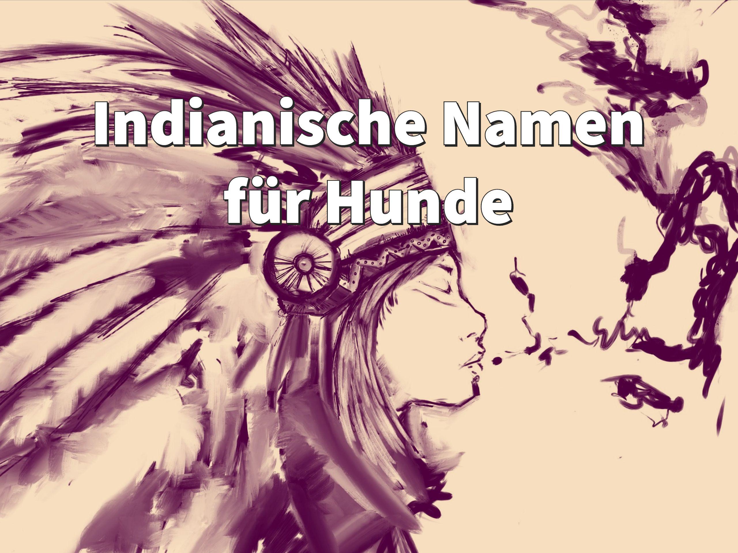 Indianische Namen Fur Hunde Weiblich Und Mannlich Mit Bedeutung Hundenamen Namen Fur Hunde Indianische Namen