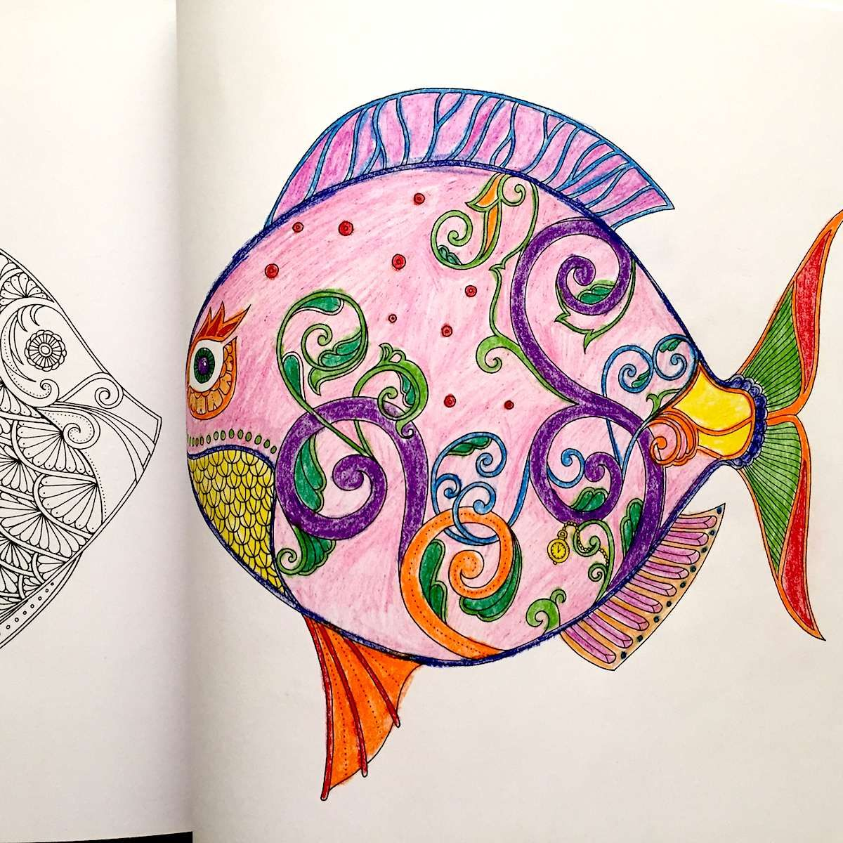Lost Ocean An Inky Adventure And Coloring By Johanna Basford Large Fish Who Knew One