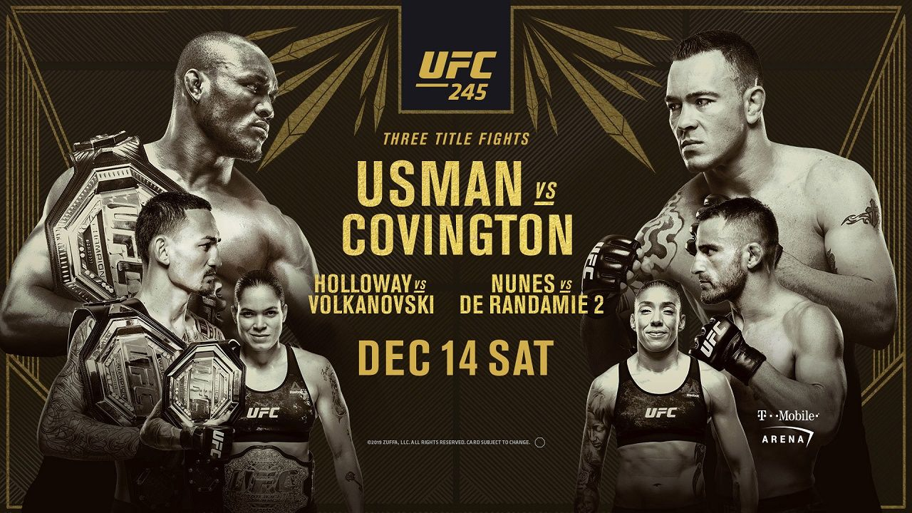 UFC 245 Ufc