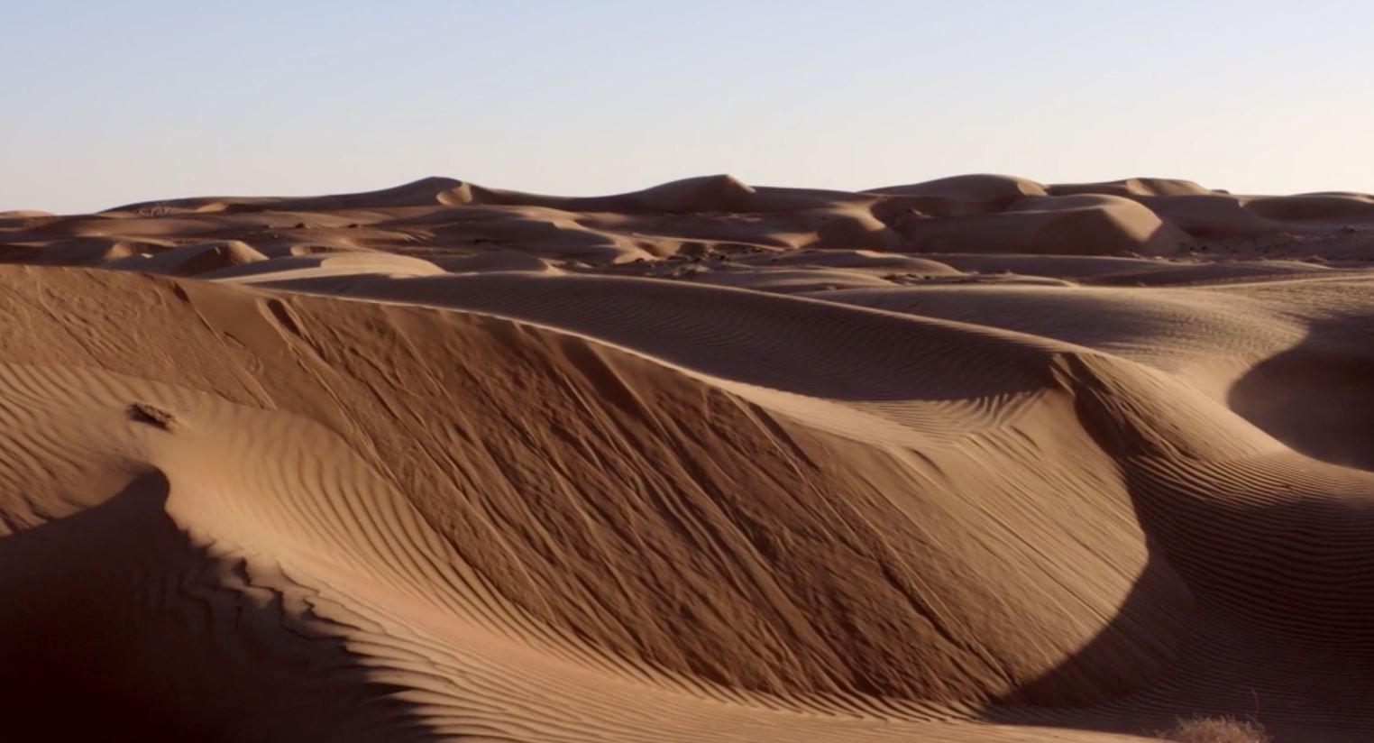 Desiertos Del Mundo Y Sus Ecosistemas Ejemplos Y Tipos Ovacen Biomas Ecosistemas Bioma Terrestre