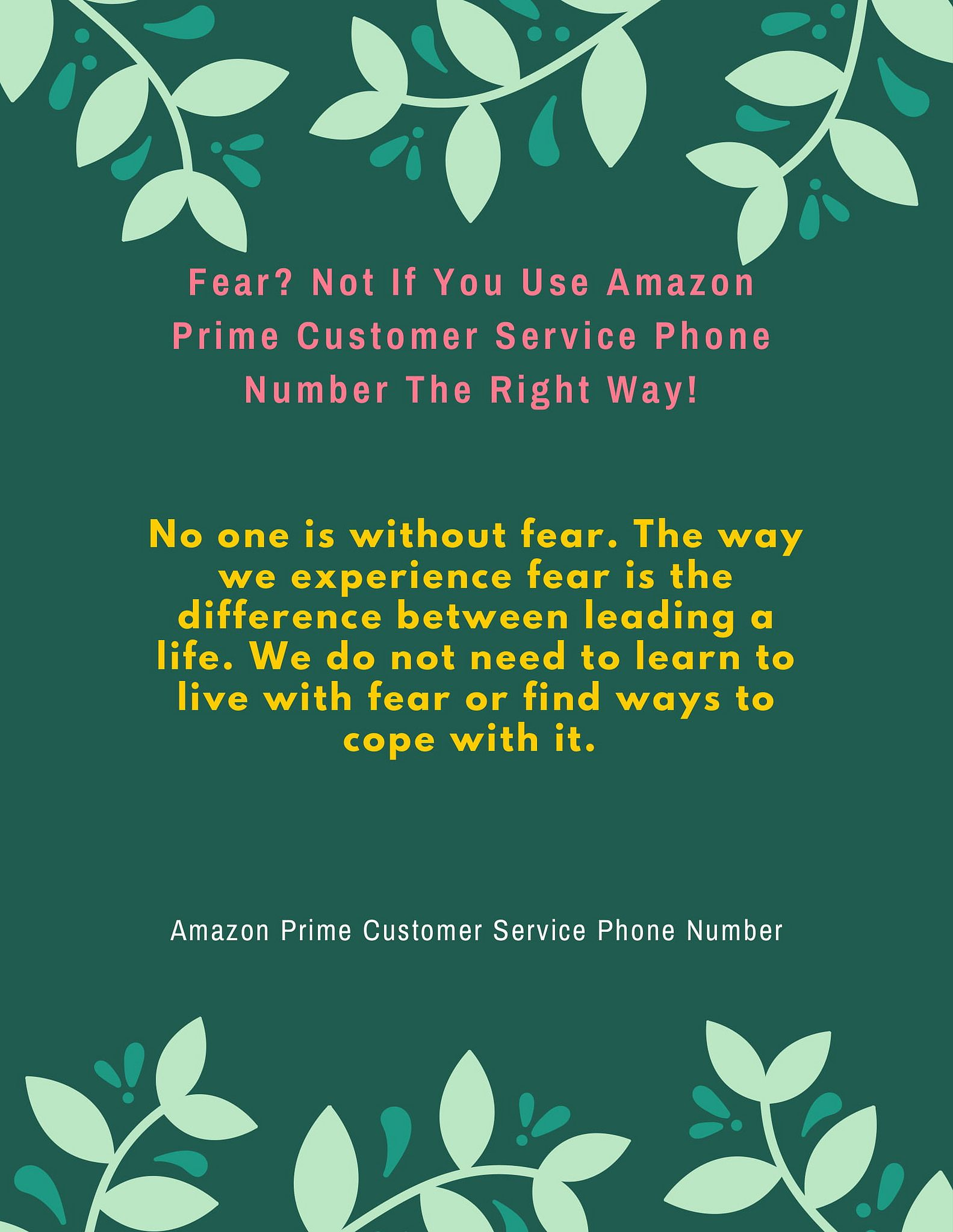 Fear? Not If You Use Amazon Prime Customer Service Phone
