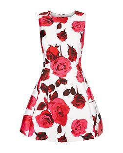 AX Paris Cream Floral Print Skater Dress | New Look