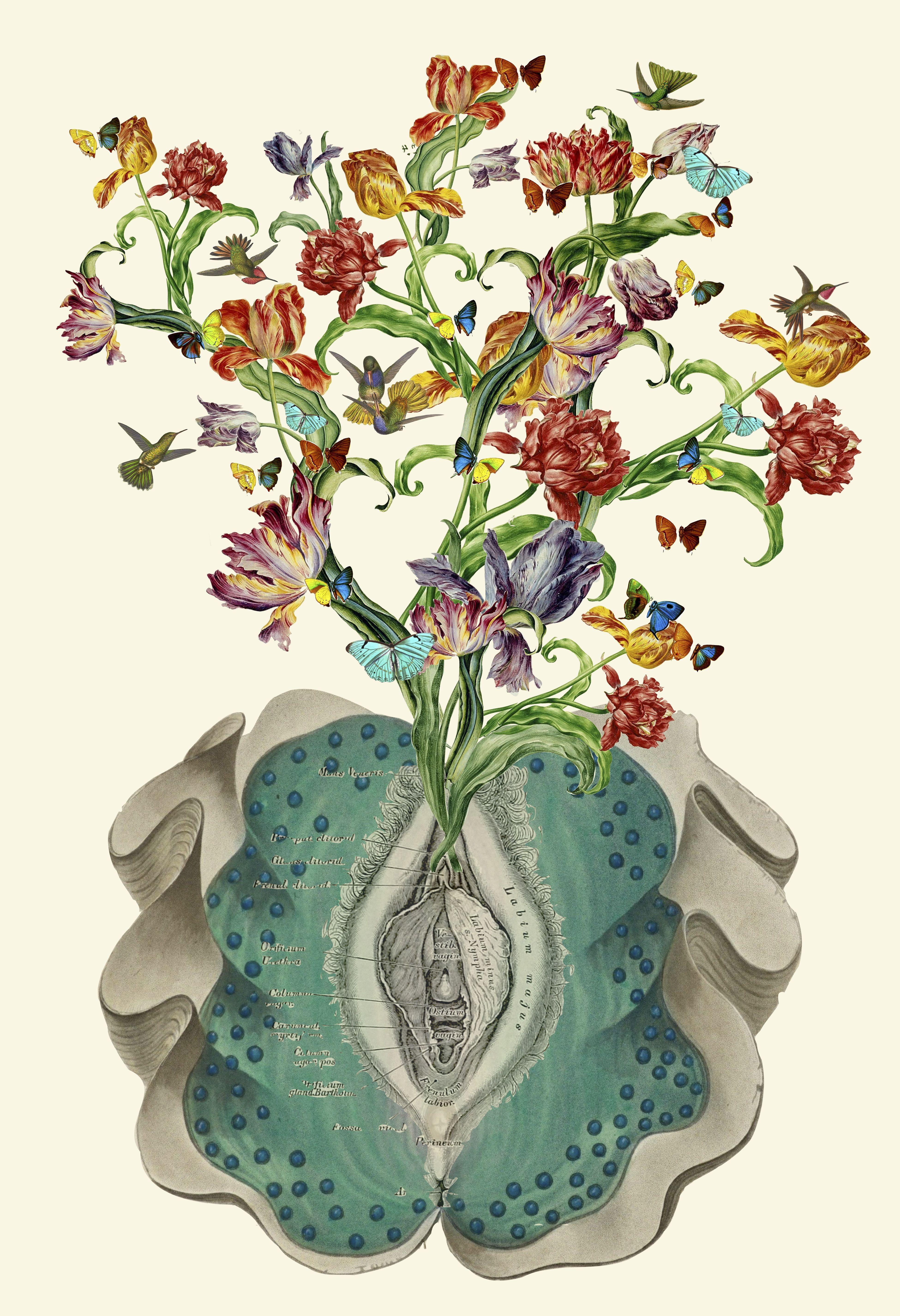 Travis Bedel - Anatomical Collage Studies | Pinterest | Exotic art ...