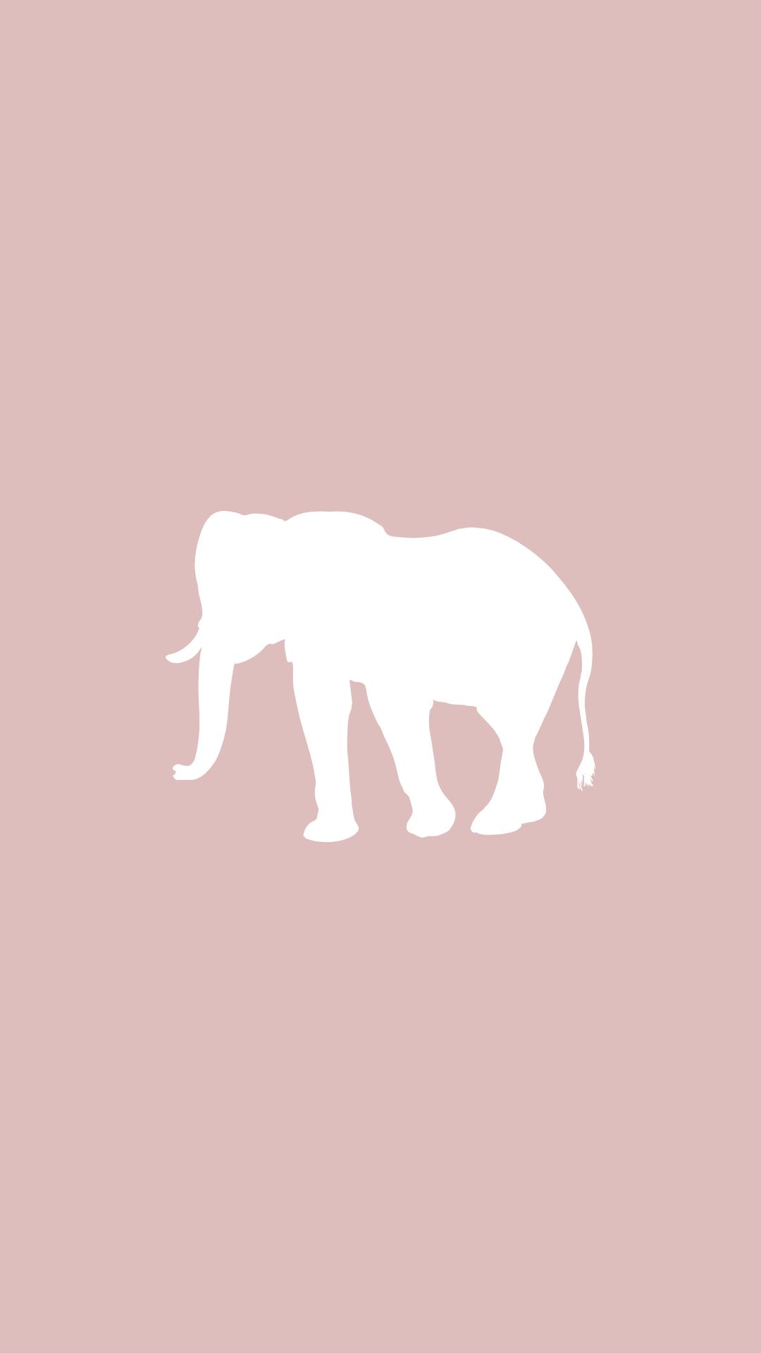 Elephant Instagram Highlight Cover Elephant Icon Instagram Highlight Icons Instagram Icons