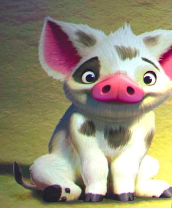 Pigs Name On Moana : moana, Likes, Like,, Black, Eyes,, Sweet,, Cute,, Bright, Funny., Disney, Moana,, Princess, Moana