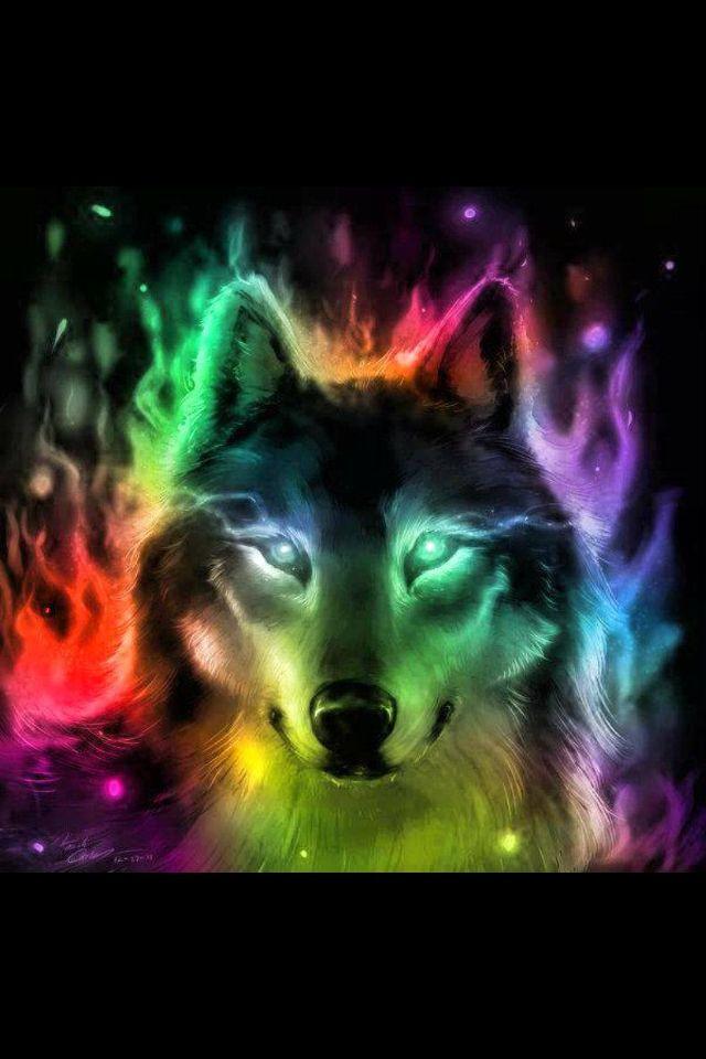 Colorful wolf Esprit du loup, Images loup, Loup fantasy