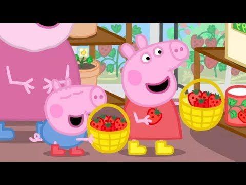 Peppa Pig Live Peppa Pig English Episodes Peppa Pig Festival Of