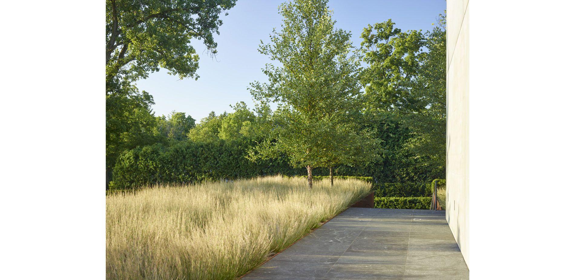 San Francisco Ca Usa Andrea Cochran Landscape Architecture Client Linda Dresner Landscape Architecture Landscape Design Landscape