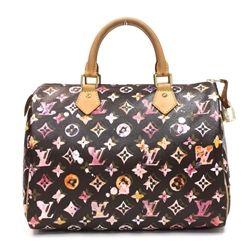 Louis Vuitton Monogram Canvas Speedy 25 Bag Carteras