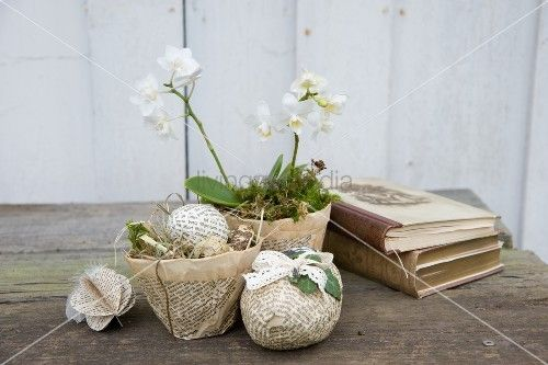 sterliches deko arrangement wei e orchidee mit diy pappmach bertopf aus nostalgischen. Black Bedroom Furniture Sets. Home Design Ideas