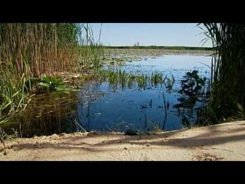 Puszta - Land of Salt and Sand - The Secrets of Nature