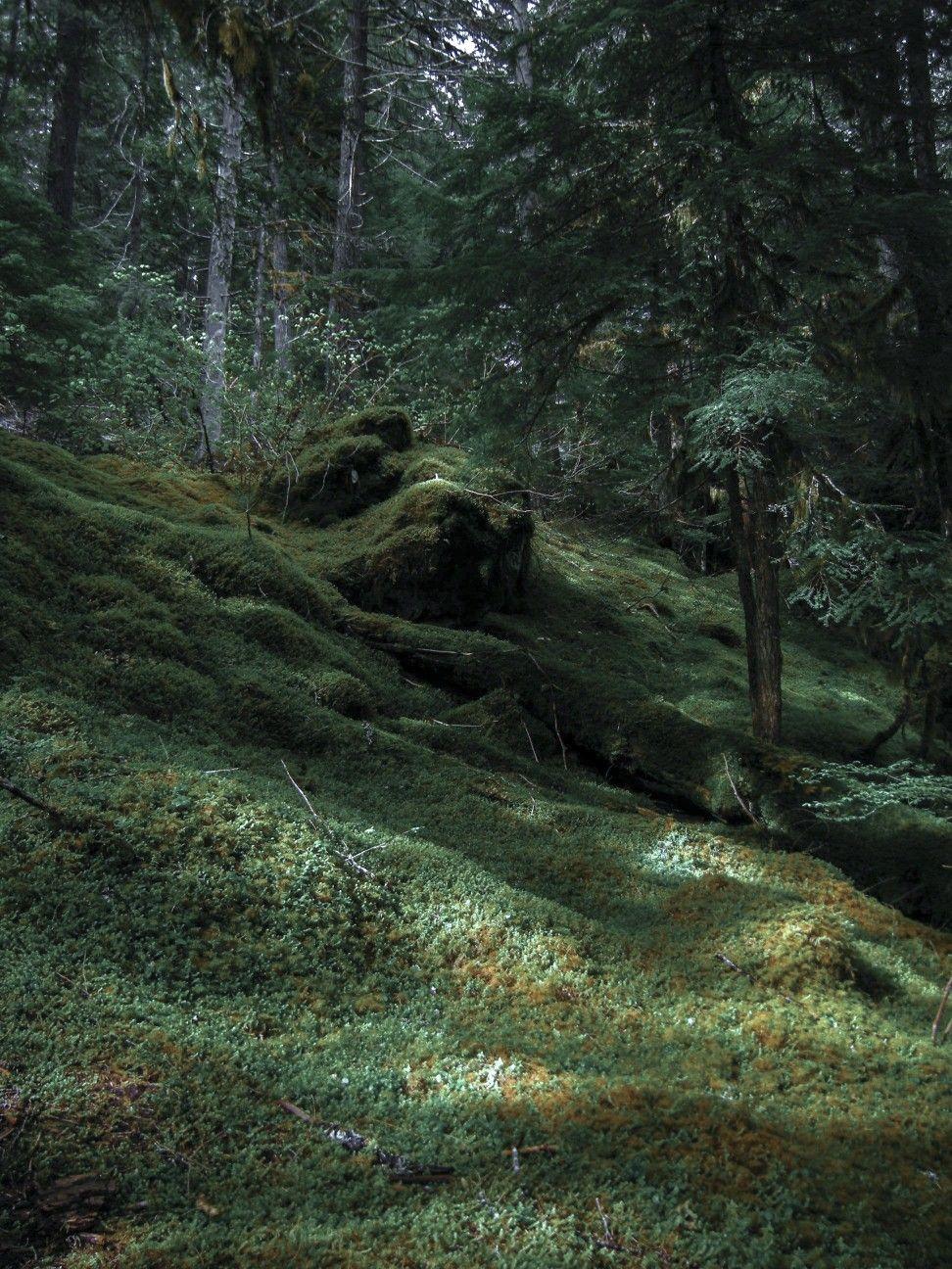 Pin By Elba On Landscapes Fantasy Landscape Landscape Beautiful Nature
