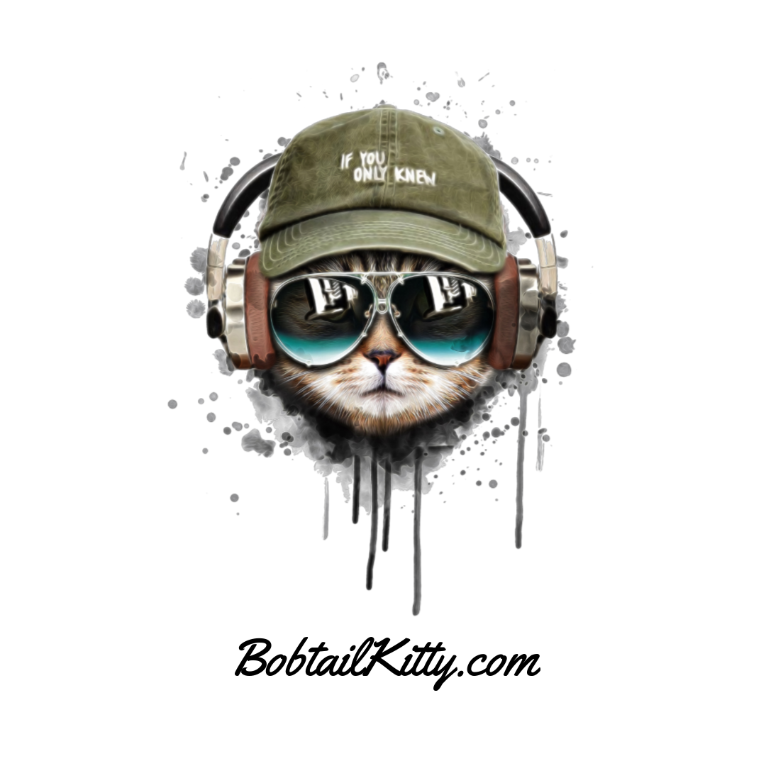 Bobtail Kitty Blog The Best Place For Cat Themed Things Watercolor Cat Cat Sunglasses Music Illustration