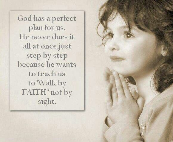 The perfect plan. .