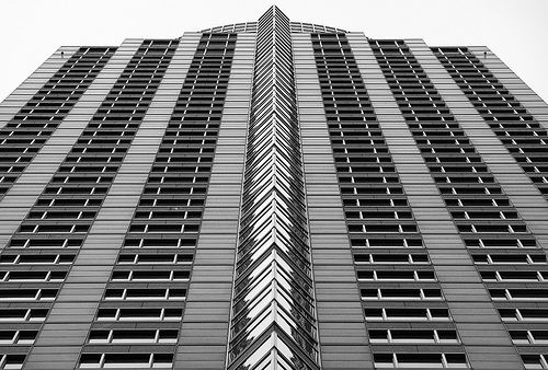 Imgs For Symmetry And Patterns Photography symmetry Pinterest